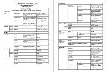 tabella morfologia