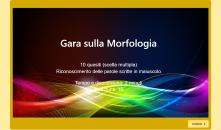 gara morfologia